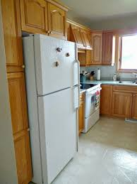kitchen cabinets around refrigerator voluptuo us