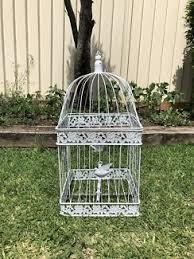 Bird Cage Decor Decorative Bird Cage In Sydney Region Nsw Gumtree Australia