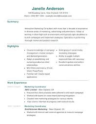 social media marketing resume sample marketing combination resume
