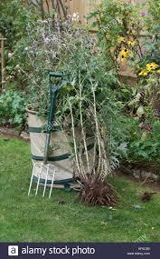garden waste bag stock photos u0026 garden waste bag stock images alamy