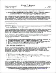 general objectives resume examples of basic template site