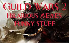 Guild Wars 2 Meme - guild wars 2 hilarious memes funny stuff kindle edition by
