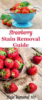 upholstery stain removal strawberry stain removal guide upholstery household and cleaning