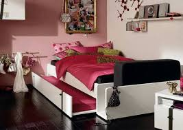 Trundle Bed For Girls Trundle Beds For Adults The Smart Investments For Home Furniture