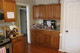 Kitchen Cabinets North Carolina Ikea Kitchen Remodel Pictures Home And Cabinet Reviews Pixels Idolza