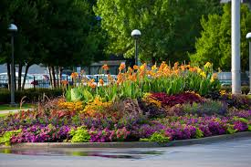 marvelous growing for youcom flower garden plans and layouts