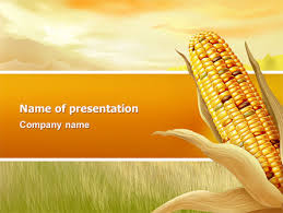 corn thanksgiving free powerpoint template backgrounds 02821