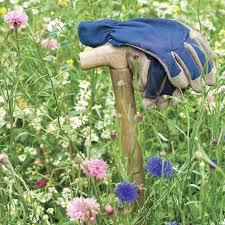 non native plants cottage garden mix 1m meadowmat turfonline