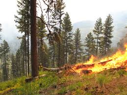 Wildfire Tools by Kootenai National Forest Home