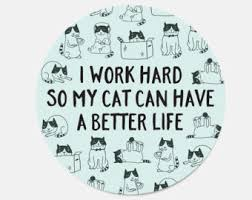 coworker gift cat mouse pad gift funny cat lover gift