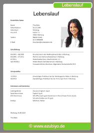 Lebenslauf Vorlage Excel Lebenslauf Bewerbung Vorlage Starengineering