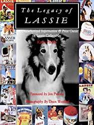 afghan hound de 1 mes basset hound movies reel dogs