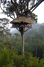 build a tree house my travel list tree