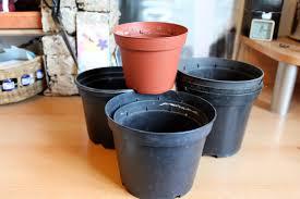 a journey to a dream plastic plant pot revamp