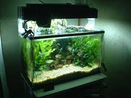 types of aquarium benefits and equipment for aquarium water movement