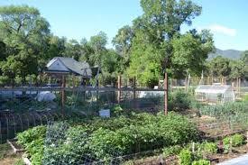 Pikes Peak Urban Gardens - harlan wolfe ranch