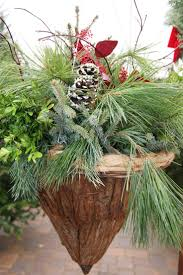13 best winter hanging basket inspiration images on pinterest