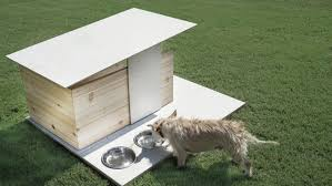 free modern dog house plans