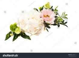 peony flowers arrangement on white background stock photo