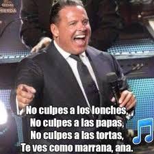 Miguel Memes - 6 cosas poquito más grandes que luis miguel memes humour and ja ja ja