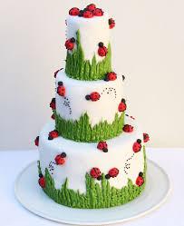 best 25 ladybug birthday cakes ideas on pinterest ladybug cakes