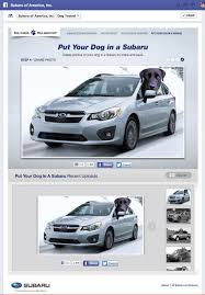 subaru america subaru of america dog tested facebook app scott morgan