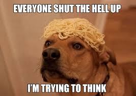 High Dog Meme - really high dogs