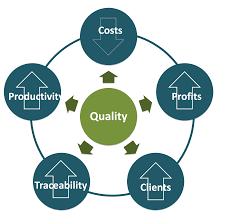 holtec international quality assurance