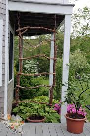 coffee for roses make a rustic trellis for annual vines