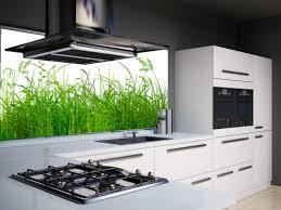 küche wandschutz küchenrückwand frontglas gmbh glasdesign