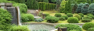 feng shui giardino un giardino benefico l olistico fiori forchette