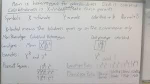 biology 3201 course website