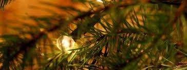 100 broadview christmas tree farm michigan broadview
