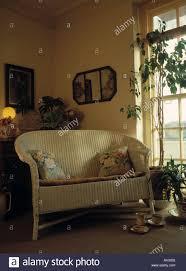 loom sofa two seater lloyd loom sofa and houseplant beside window in