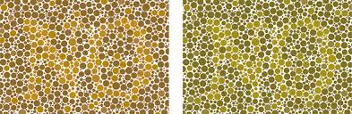 Human Color Blindness Reverse Color Blindness Test