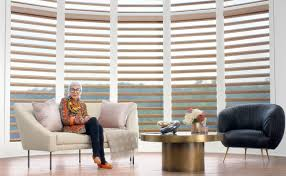 new hunter douglas ad campaign pairs style icon iris apfel with