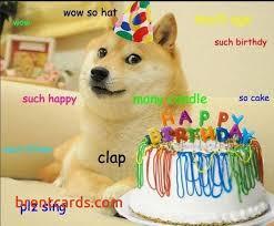 Birthday Meme Dog - chihuahua birthday card unique best 25 birthday meme dog ideas on