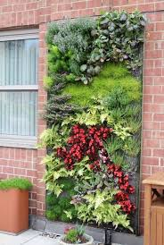 fall garden vertical wall wall garden vertical gardening systems