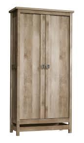 Door Storage Cabinet Loon Peak Sunlight Spire 2 Door Storage Cabinet Reviews Wayfair