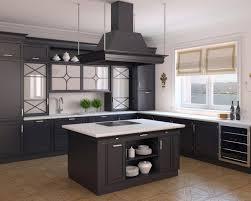 Open Kitchen Cabinets by Kitchen Stunning Open Kitchen Design Ideas Black Kitchen