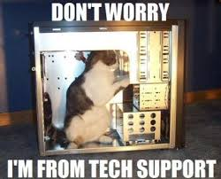 Friday Cat Meme - friday funny tech support cat bowman performance consulting