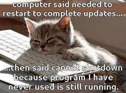 Cat Laptop Meme - cat feet