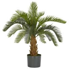 Fake Plants Home Depot Cycas Silk Plant Silk Plants And Green Products