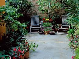 Backyard Landscaping Ideas For Privacy by Landscaping Tips And Solutions Hgtv