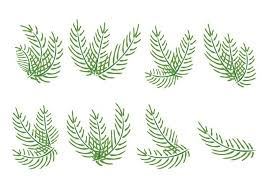 palms for palm sunday palm sunday vector palms free vector stock