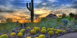 Scottsdale Botanical Gardens Desert Botanical Garden American Gardens Association