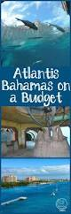 atlantis bahamas on a budget family travel magazine