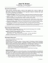 Resume Career Summary Example by Resume Templates Skills Summary