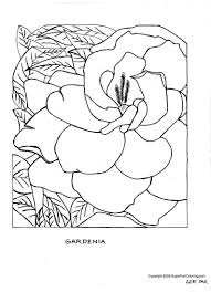cool printable flower coloring pages nice colo 2292 unknown