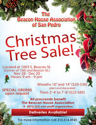 christmas tree sale christmas tree sale the beacon house association of san pedro
